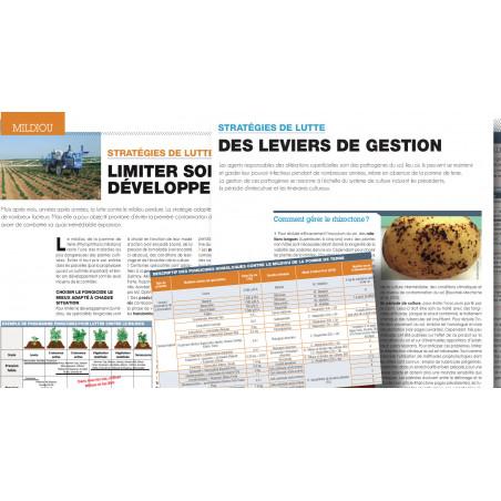 """La Pomme de Terre Française Hors Série """"Comment lutter?"""" (44 pages)"""